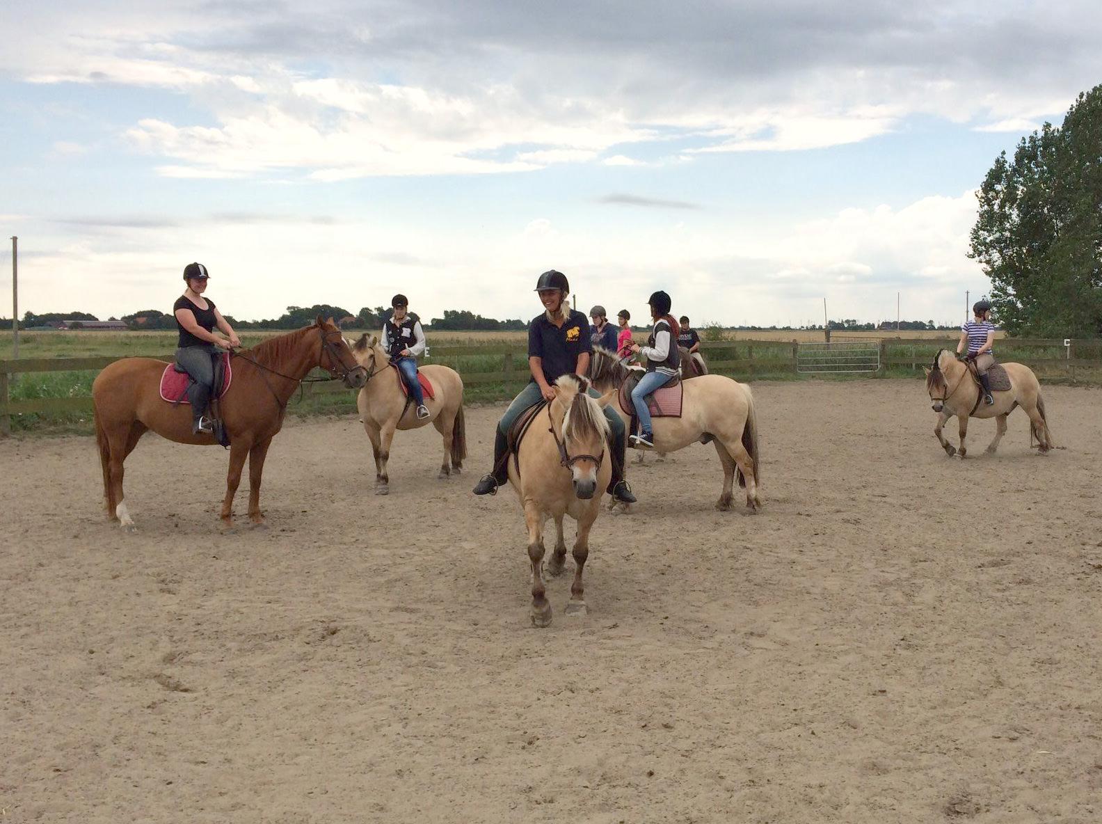 Spass mit Pferden